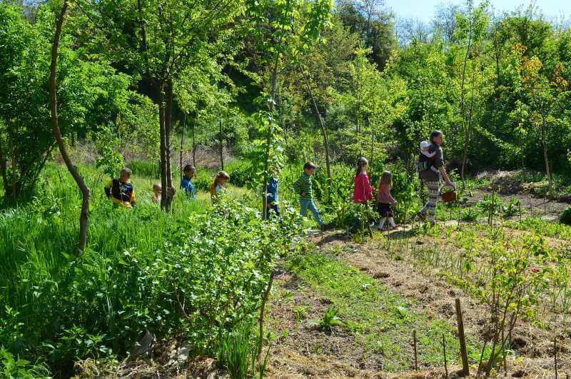 Óvodások látogatása a permakultúrás bio-kertészetben