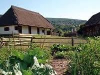 Bio-kertészet: Szentendrei Skanzen zöldséges kertje az egyik parasztház udvarán