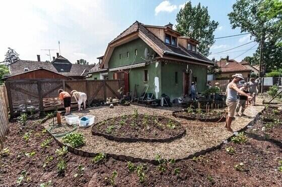 Bio-kertészet: a családi ház előkertjét ehető zöldségekkel és gyümölcstermő bokrokkal ültetik be
